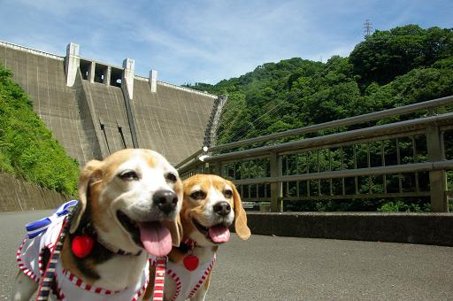 120716-09cookychara on miyagase dam