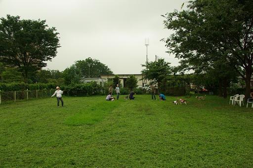 120722-25hirukawa view