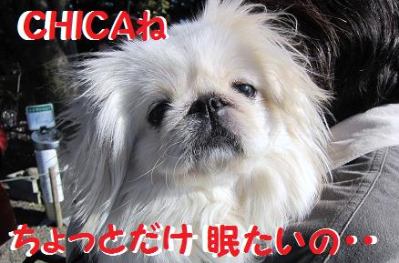 IMG_15916.jpg