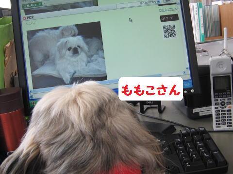 IMG_62910.jpg