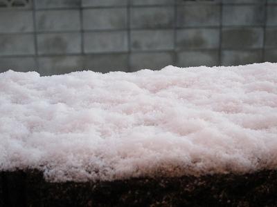 雪 (2)
