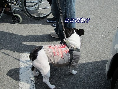 お見舞い (2)