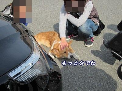 お見舞い (4)