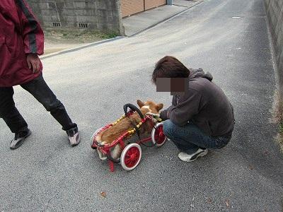 車いす (5)
