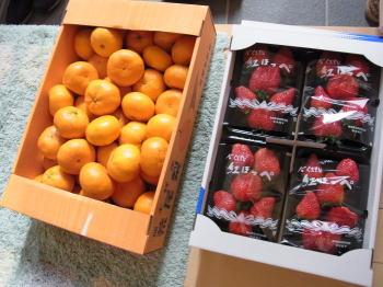 20111211itigo.jpg
