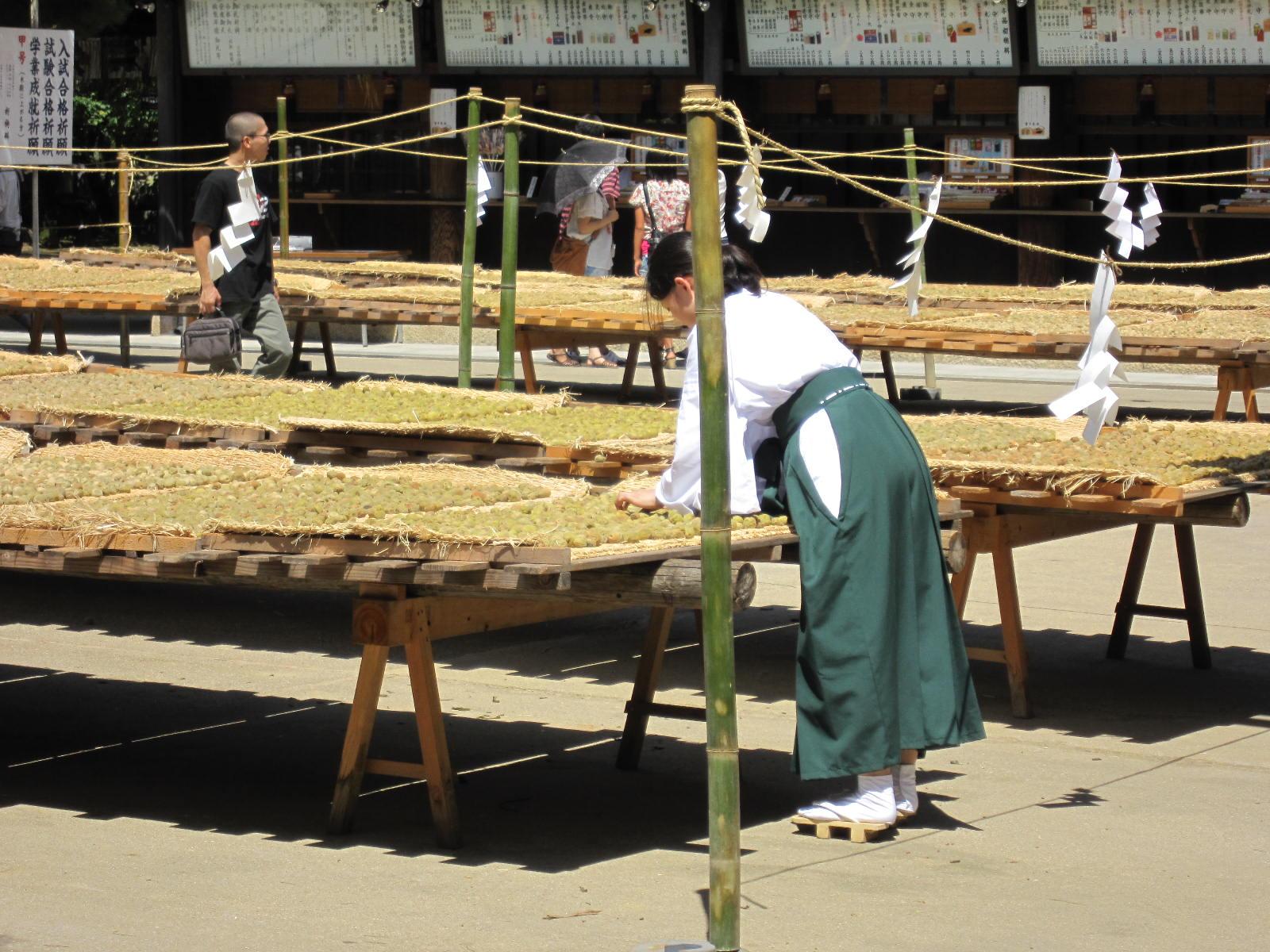 10.7京都・祇園祭 721