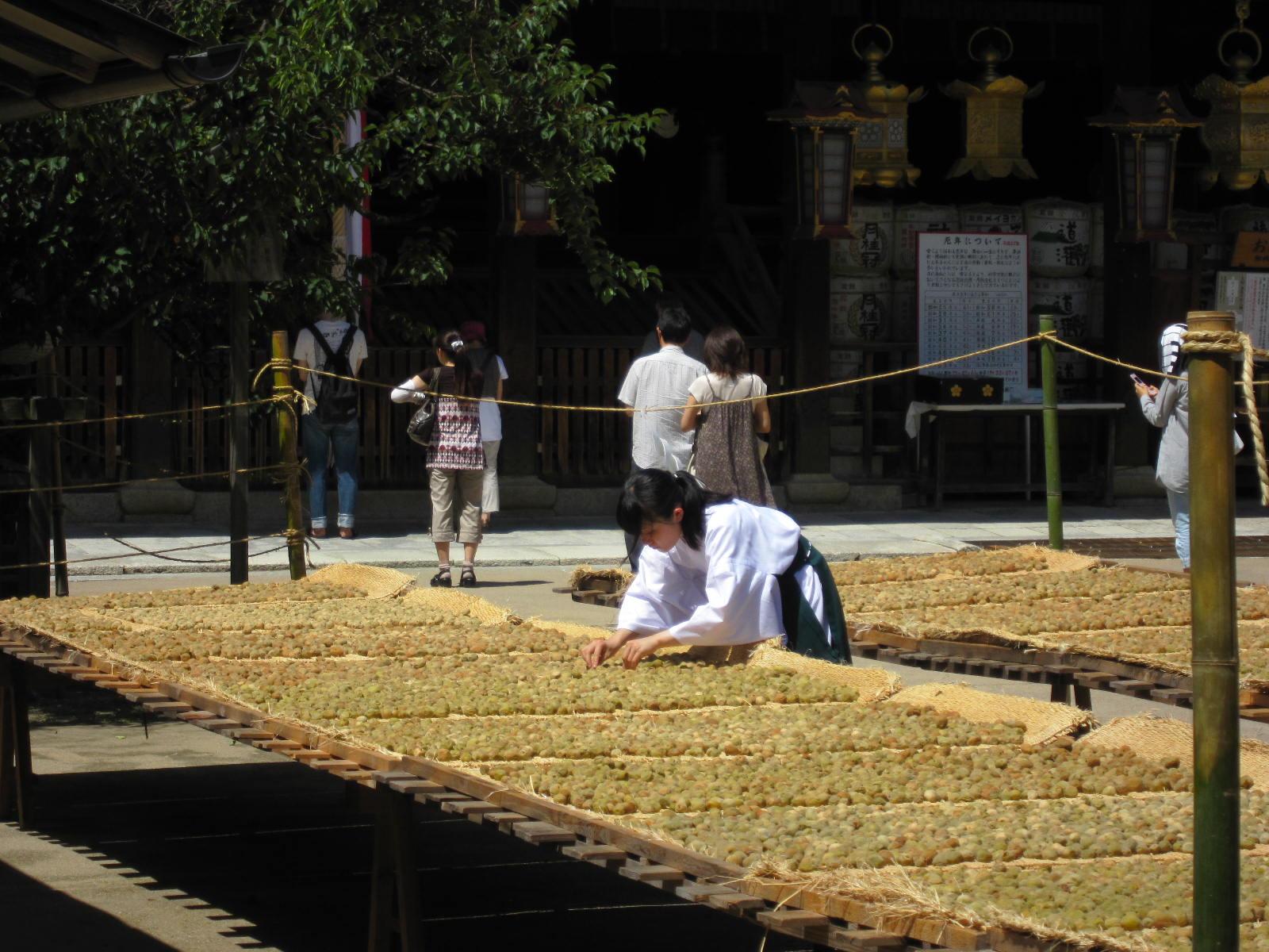 10.7京都・祇園祭 726