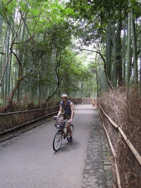 カウチサーフィン(アメリカ、ジャスティンとジェニファー)、京都・嵐山の竹林にて