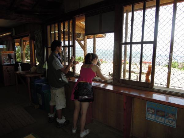 カウチサーフィン(アメリカ、エイミーとダレル)、嵐山のモンキーパーク2