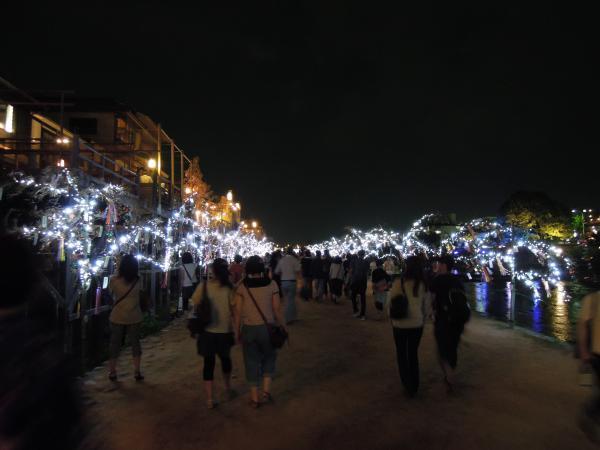 京の七夕・鴨川会場、笹のライトアップ