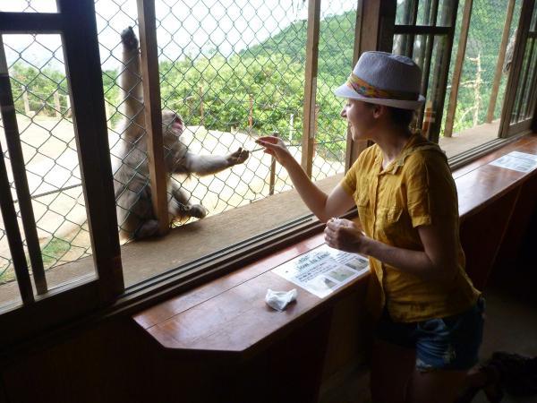 カウチサーフィン(チェコ共和国、ルカ(ルーマニア))、サルに餌