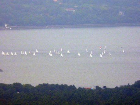 ヨット大会
