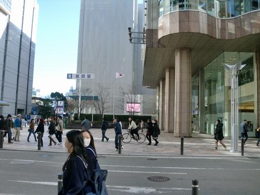 20110308jirei_1.jpg
