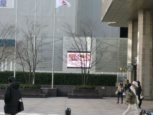 20110308jirei_2.jpg
