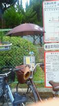 20100730-1傘