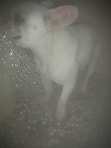 シャワー中・・覗かないでね~