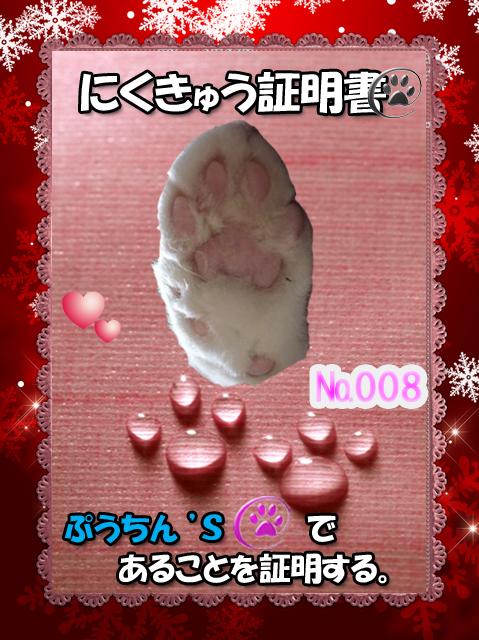 肉球110226(ぷうちんくん)