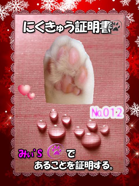 肉球110226(みぃちゃん)