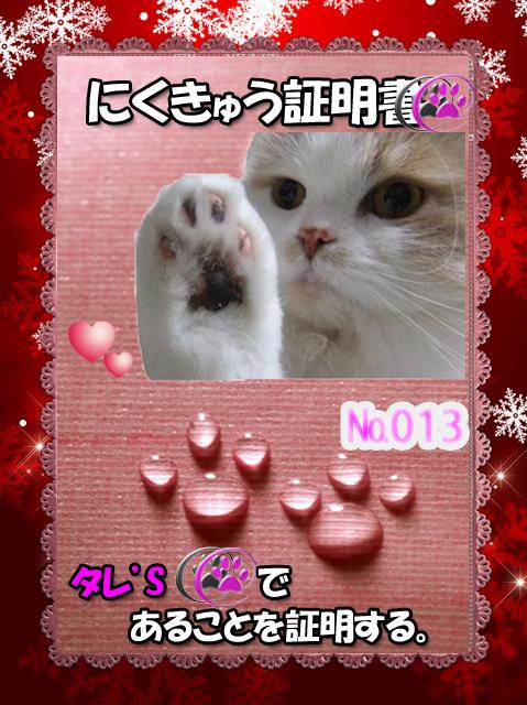 肉球110226(タレちゃんお顔付き)2