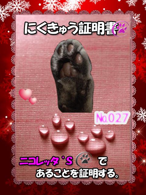 肉球(ニコレッタちゃん)