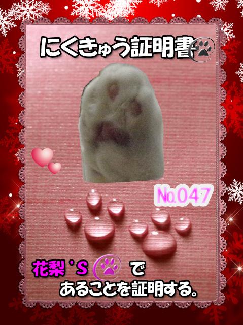 047証明証(花梨ちゃん)