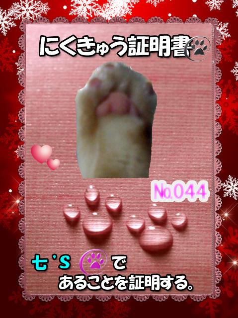044証明証(七くん)