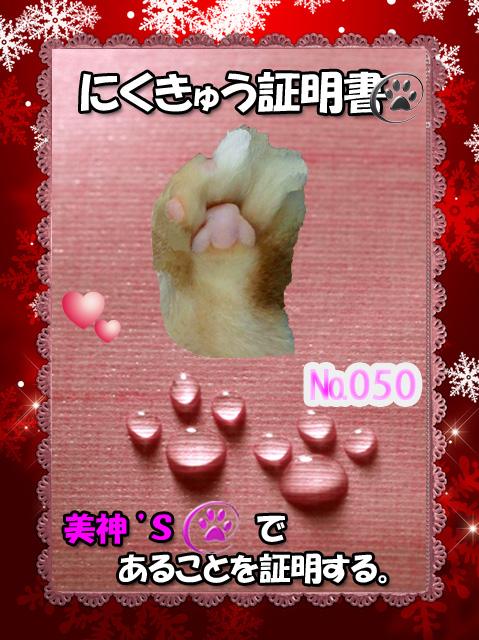 050証明証(美神ちゃん)