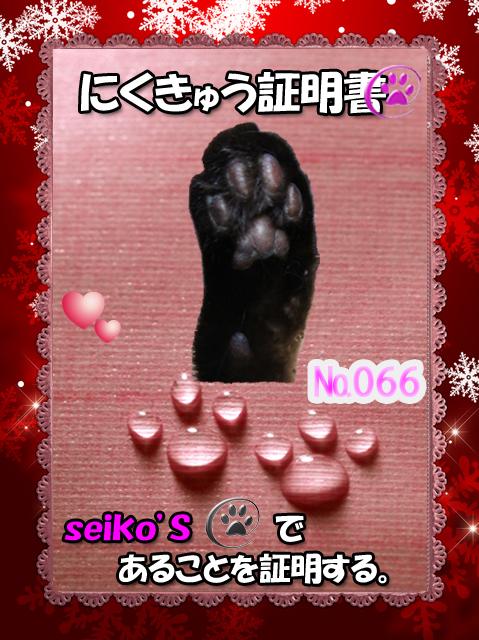証明書(SEIKOちゃん)