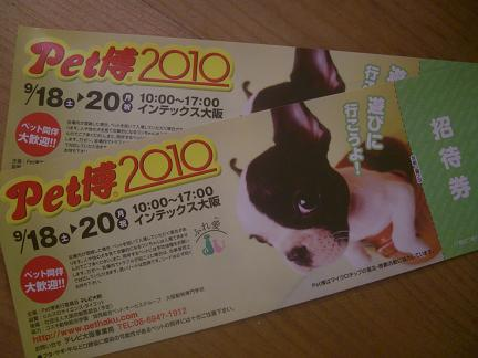 2010-8 009