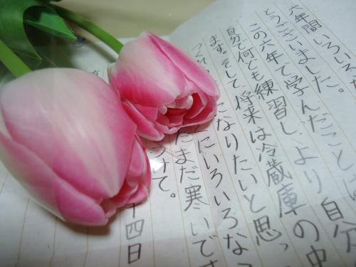 11_20120423010501.jpg