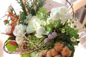 11,5ミエルお花