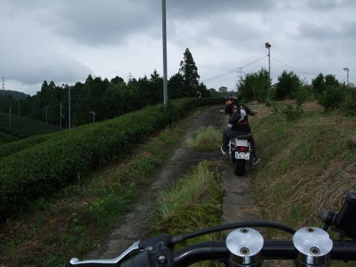 DSCF4571_20100703224941.jpg
