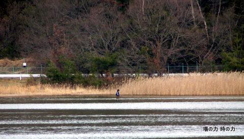 小幡緑地緑ケ池