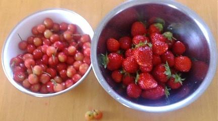 2012 苺とさくらんぼ