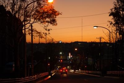 晩秋の帰り道-5377