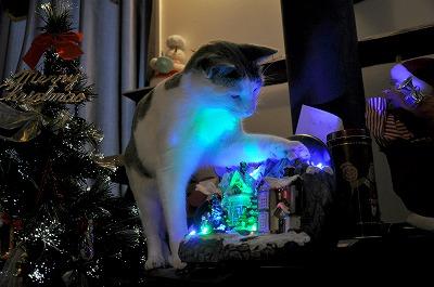 クリスマス当日4
