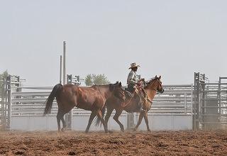 ranchrodeo8