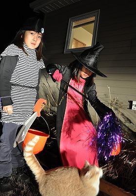 2012 Halloween day6