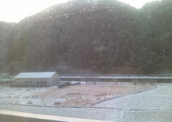 季節外れの雪が降ってる
