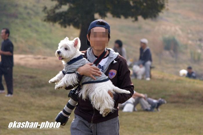 IMG_0107_20111108024259.jpg