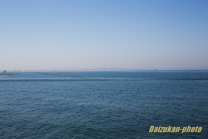 daizukan-photo-0528.jpg
