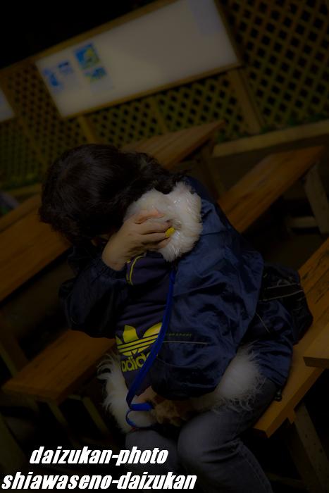 daizukan-photo-1389.jpg