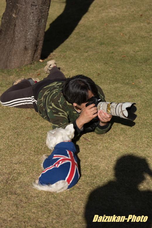 daizukan-photo-3657.jpg