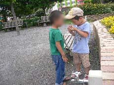 うみかぜ公園4