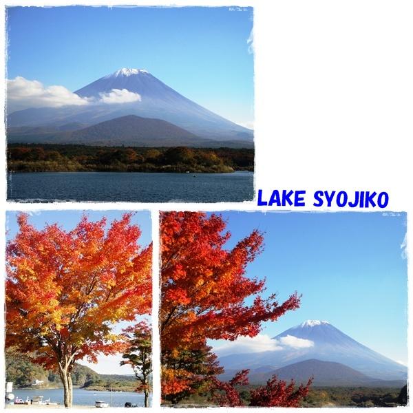 goko110611.jpg