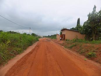 アボメイの田舎道