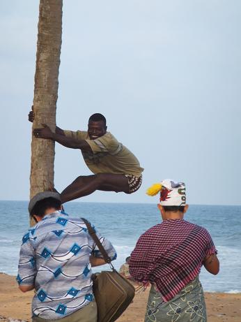ココの木に登る!?
