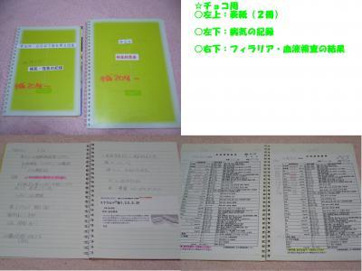 3_convert_20110913135545.jpg