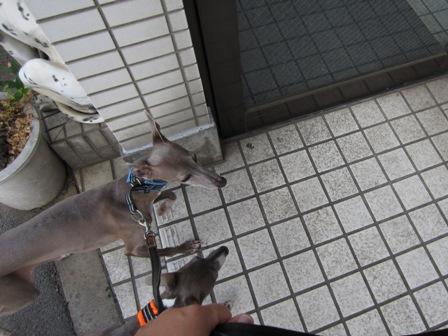 0721病院へ_03