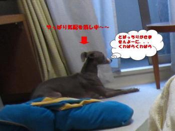 0801イタズラの代償_03